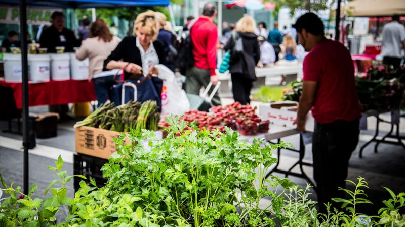 gal-Reston-Station-Farmers-Market