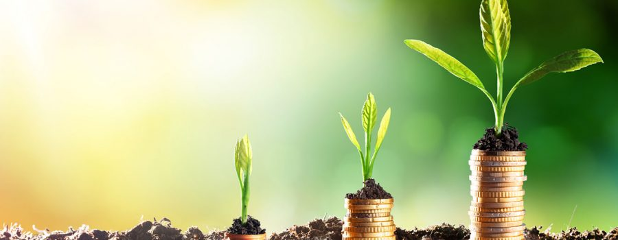 Investor Relations Grid – Static 1